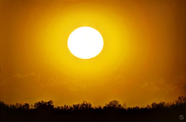 Sun Wind Dust