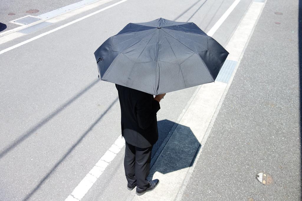 普通の折り畳み傘上からの図