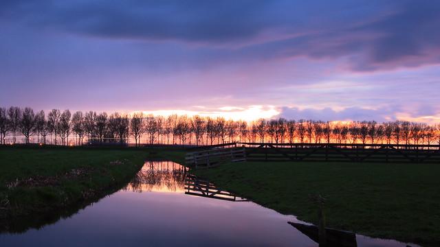 Dutch spring evening