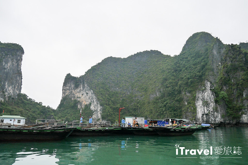 《下龙湾景点推荐》穿洞 Hang Luon:广宁搭乘游船穿越洞穴,欣赏别有洞天的世外桃源。