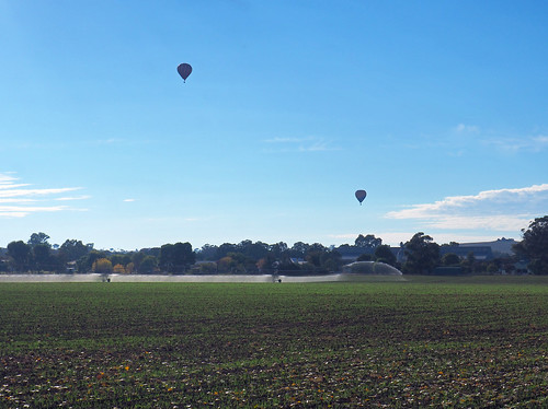 Balloons Over Canowindra