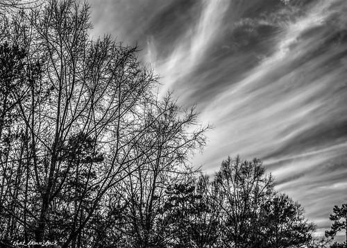 blackandwhite nature clouds landscape bw blackwhite