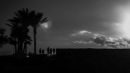 monochrome blackandwhite againstthelight sunset silouette palm trees dock old town medieval city jbeil byblos lebanon middleeast mediterranean sea urban landscape olympus omd em5ii 124028 timosl flickr explore explored