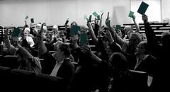 stemmen_groen