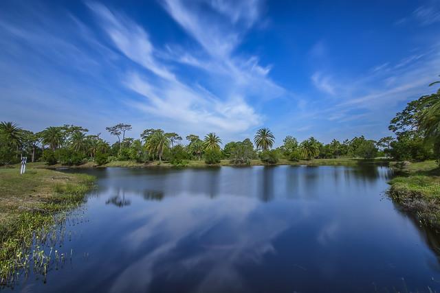 Wickham Park - Melbourne, Nikon D500, Sigma 10-20mm F4-5.6 EX DC HSM