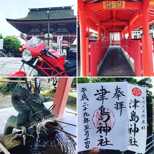 津島神社で御朱印を頂きました〜暑くてヤバイ #japanese #shintoshrine #ducati #ducatimonster #gosyuin #御朱印