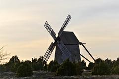 Sankt Olofsholm, Gotland