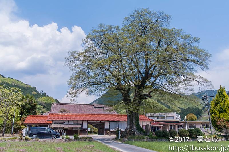 mekikamae-5