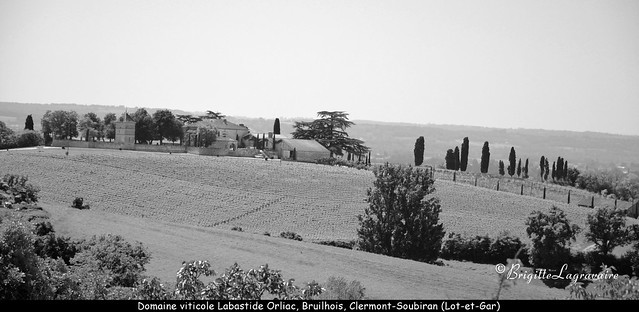 Un des domaines viticoles du Brulhois.