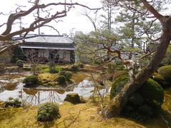 jap 2013 iga-ueno 011