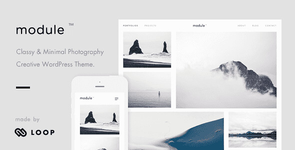 Module WordPress Theme free download