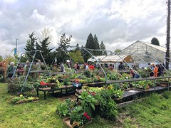 The Spring Plant Sale is happening now! Join us at #lwtech! Runs until 3pm today. #plantsale #kirkland #horticulture #Friday #TGIF #green #weekend