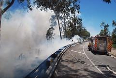 LAFD Halts Grass Fire Alongside Hollywood Freeway