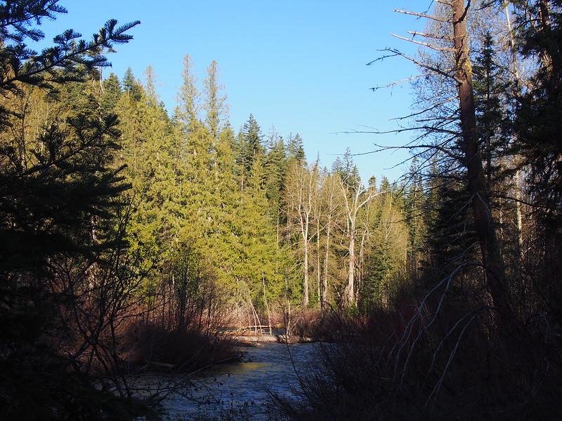 Middle Fork Teanaway River