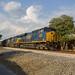 CSX N303 at Calhoun Depot