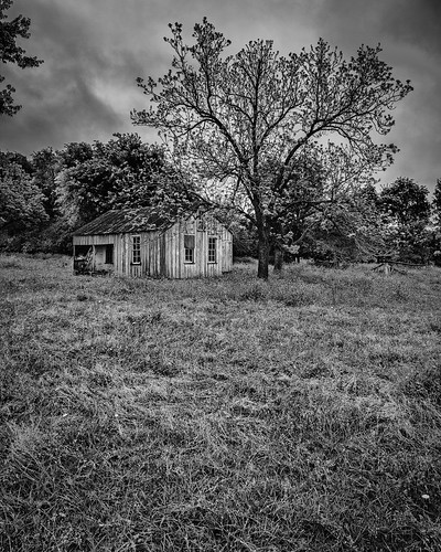 abandoned bw blackwhite blackandwhite clouds decay decayed derelict deserted dilapidated home house monochrome old pasture ruins trees willowsprings fayetteville texas unitedstates us oncewashome