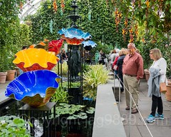 Macchia Forest (2017) within the Haupt Conservatory, Dale Chihuly Exhibit at the New York Botanical Garden