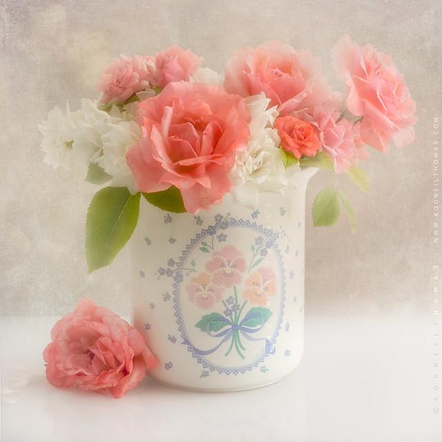 Auntie Em Roses