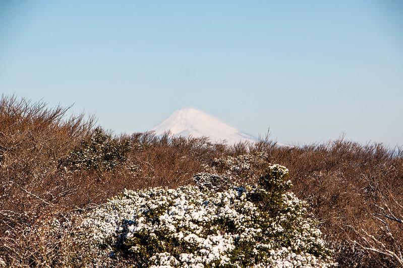 20170211-三原山(伊豆大島)_0103.jpg