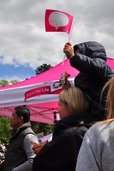 waving a flag