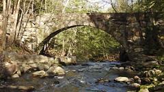 Bridge In Hobbit Land or Vaughan Woods in Hallowell