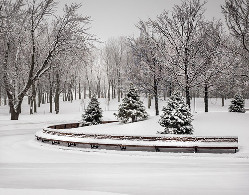 amazing bench canada destinationwow earthpics goneoutdoors holiday lacdescastors landscape landscapephotography montreal montroyal nature olympus photosergereview pinetree skatingrink snow snowing travel traveller travelphotography trees trip vacation winter quebec ca