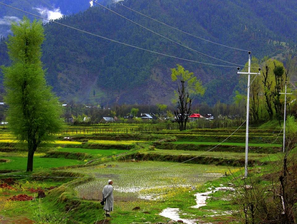 kokernag spring is a cold, wet but beautiful time to visit the destination