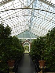 Planting Fields Arboretum - Oyster Bay (15)