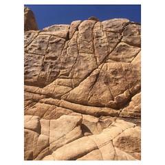 Today's problems! #joshuatreenationalpark #bouldering
