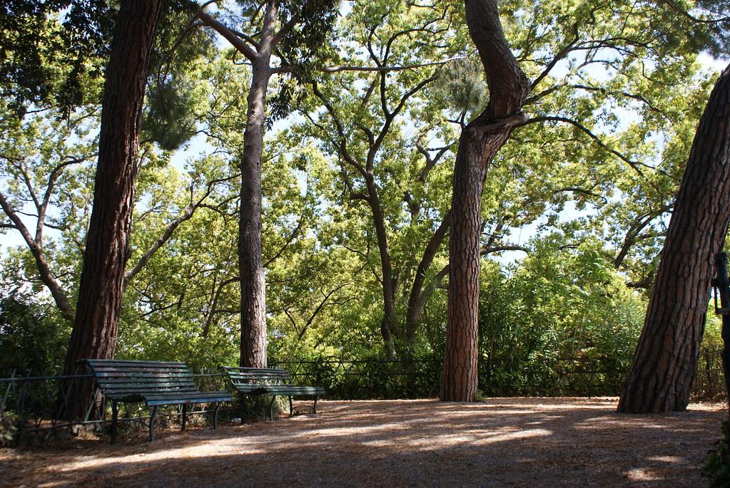 A Gênes dans parc de la Villetta Di Negro sous les pins.