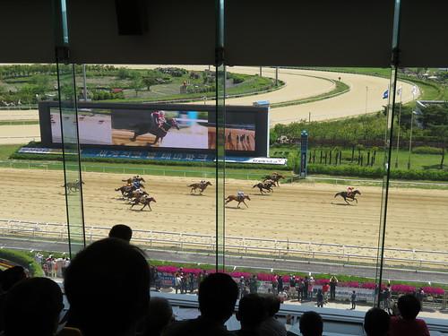 釜山慶南競馬場の3階でのレース観戦の様子