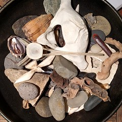 I love looking at other peoples #naturecollection(s) ... #foundforaged  #naturetable #bones #seashells #driftwood #rocks #bowl #camanoislandstudiotour