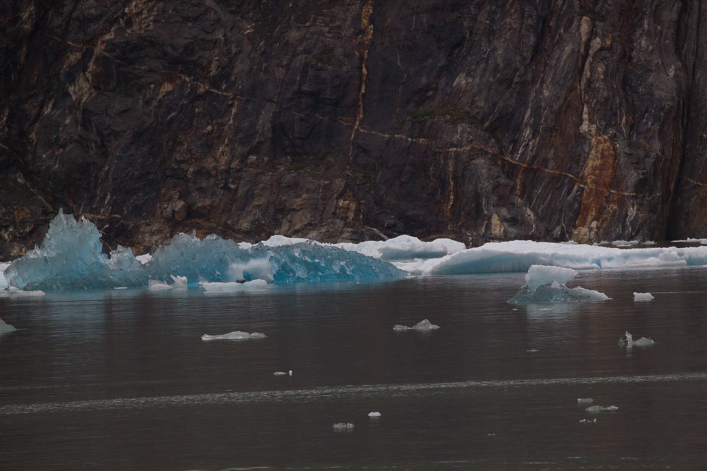 Blue icebergs in Tracy Arm Fjord