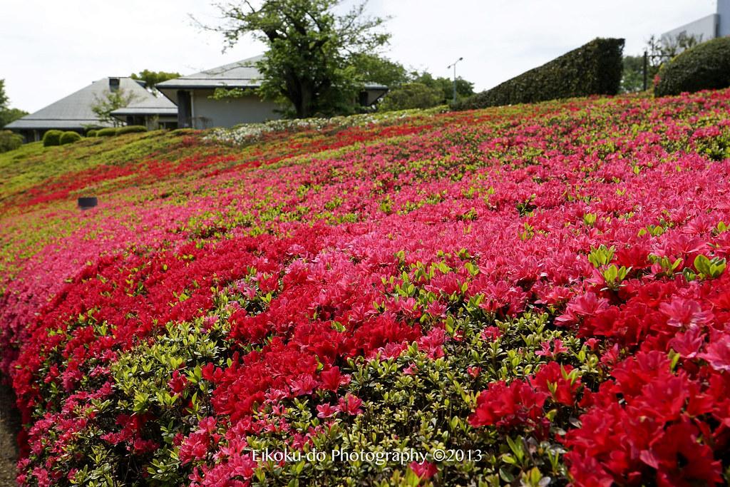 DIC川村美術館