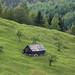 Romanian Landscape (Judith Rolfe)