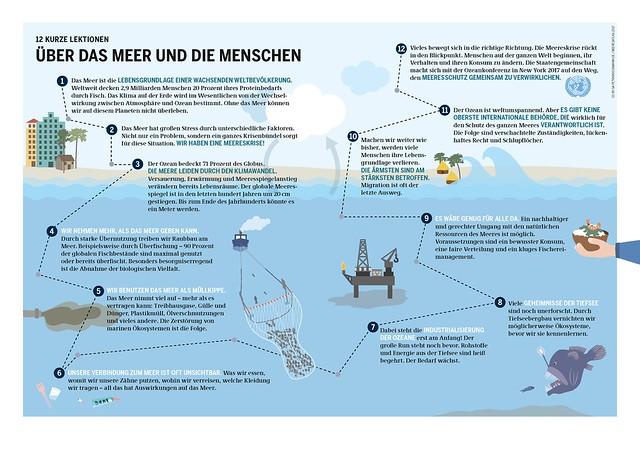 Grafik: Meeresatlas 2017, Petra Böckmann/Heinrich-Böll-Stiftung
