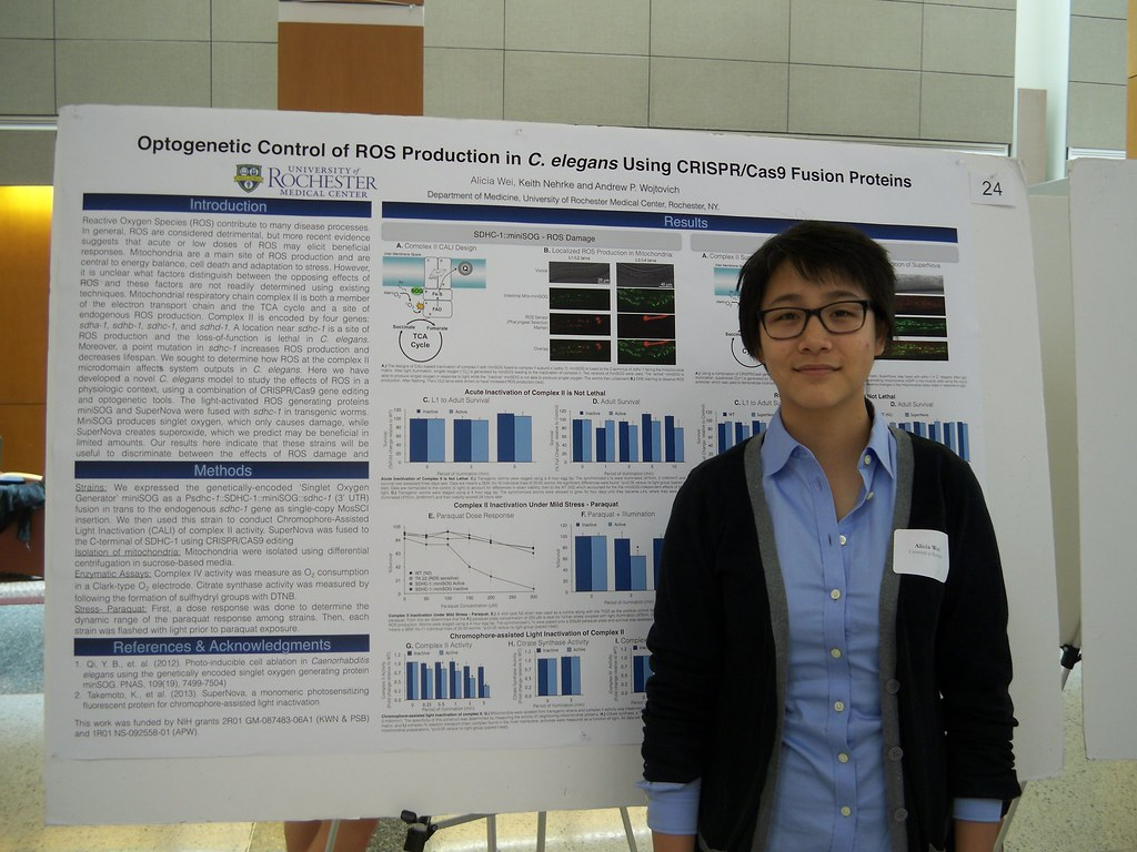 Alicia Wei with poster