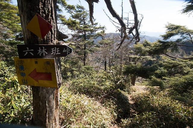 20150510-皇海山-0626.jpg