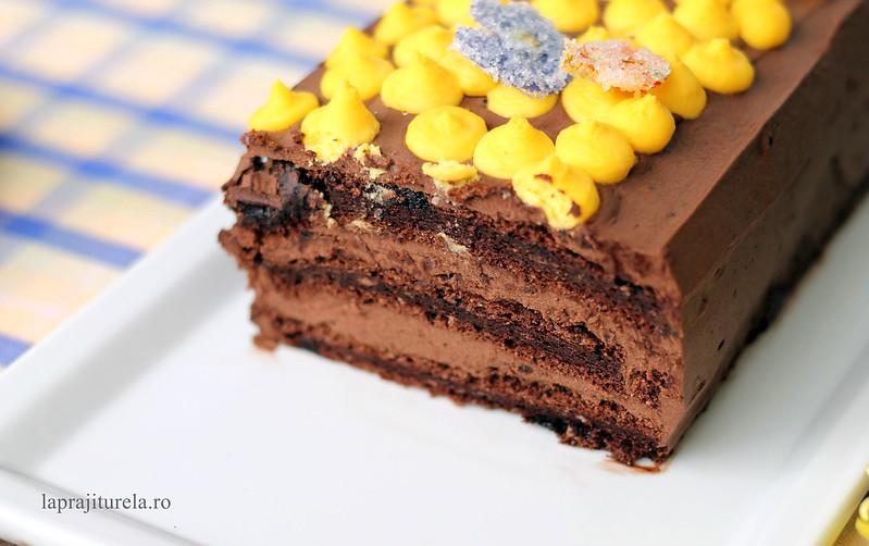 tort cioco2