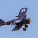 CMB_1176 - Web Warbird Aviation