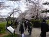 Photo:17d5684 By kimagurenote