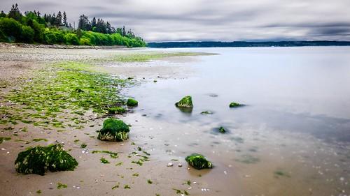 howarthpark landscape beach lowtide longexposure trinterphotos beachrocks seaweed possessionsound