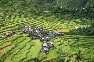 Incredible beauty the terraced rice fields in Luzon