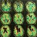 Dando uma olhada nos sistemas 1 e 2 por dentro. #economiacomportamental #behavioreconomics #brain #cerebro #cienciascomportamentais