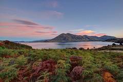 Great sunset spot near Wanaka, New Zealand.  #wanaka #newzealand #nz #natgeoyourshot #wanakalake #wanakanz #newzealand #nzmustdo #destinationnz #kiwi #kiwi_photos #kiwipics #nzmustdo  #photographersdiscovery #wonderful_places  #wanderlust #moodyports   #k