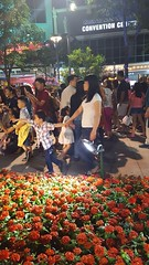 Saigon Tet time 2017