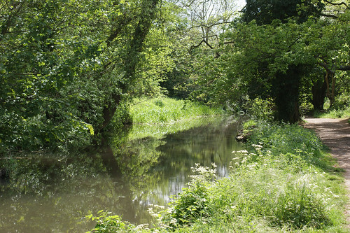 Close to the River Darent