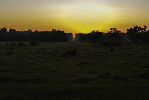 6d canon ef2470f28l eos home morning naturalbeauty naturallight nature outdoor prairie summer sunlight sunrise tarkington texas topazlabs beautiful colors