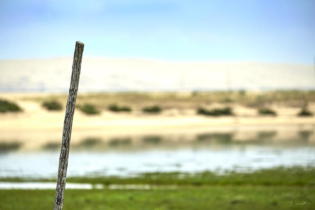 Le baton et la dune