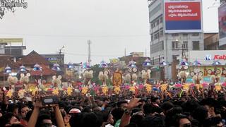 Thrissur Pooram 2017 - 07